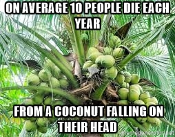 coconut tree average