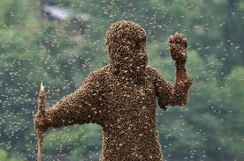 swarm leader man